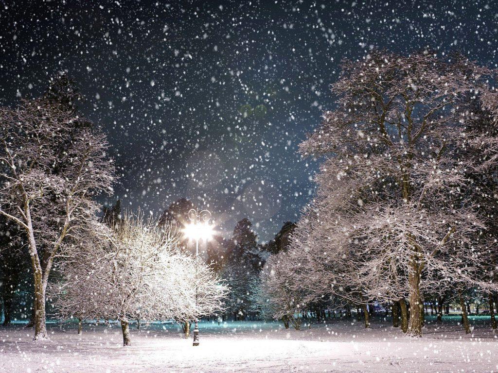 идти на свет в снегом