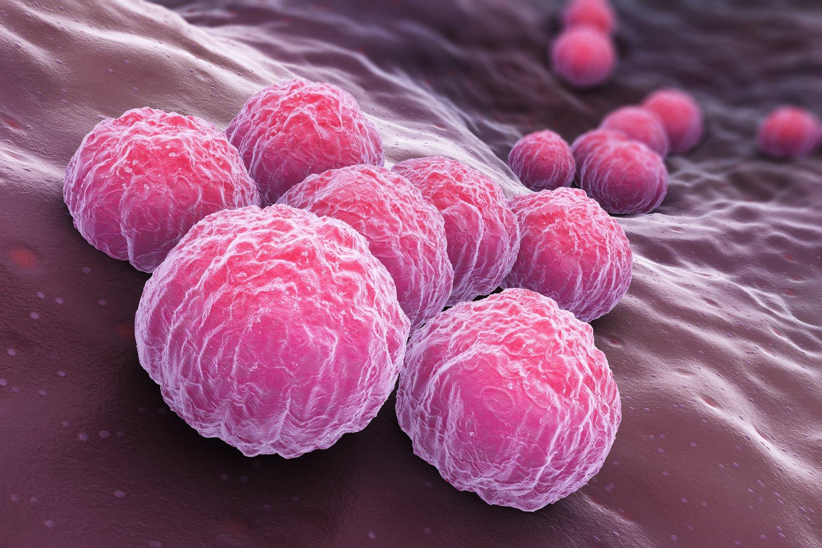 микробы на слизистых оболочках