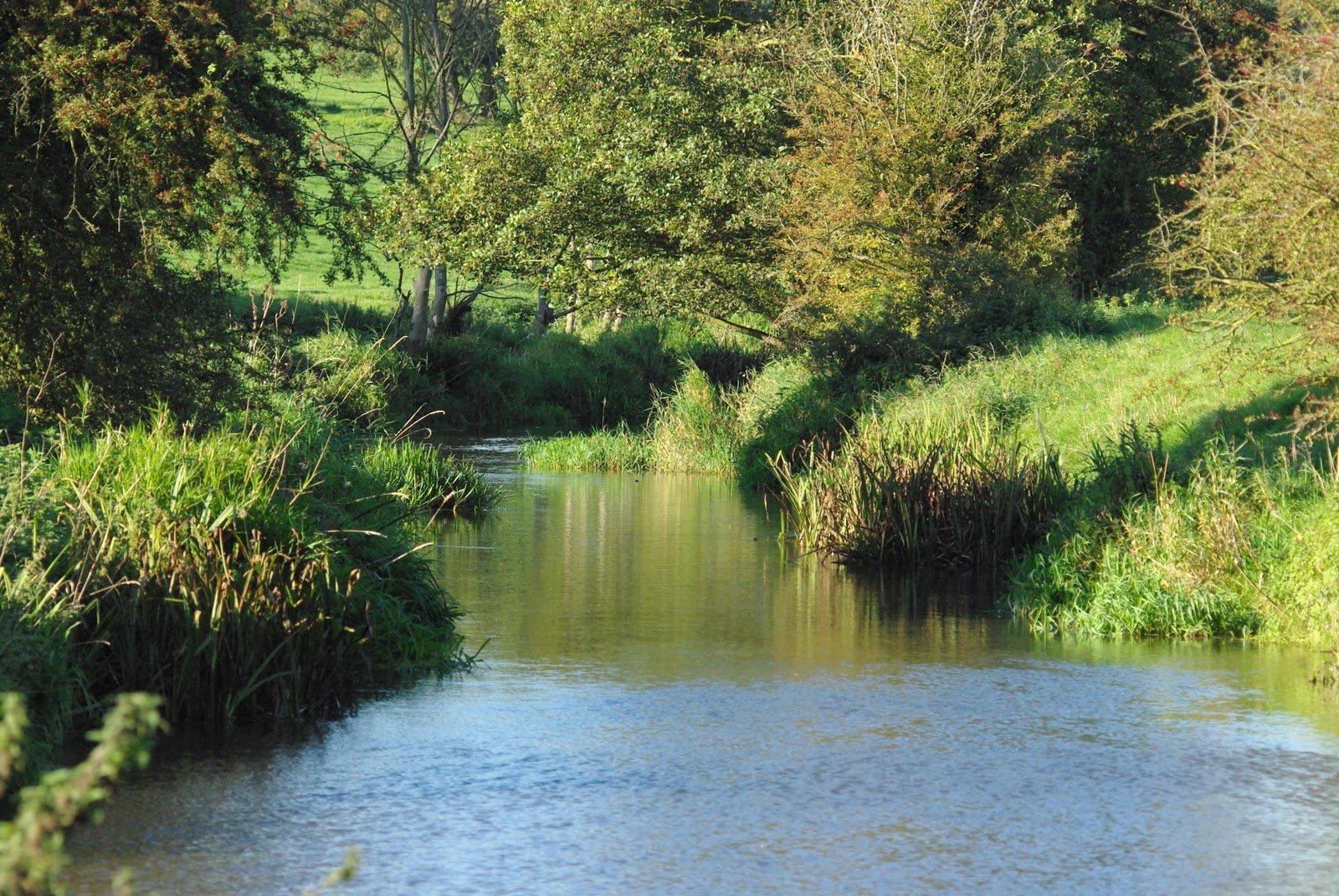 вода и зелень