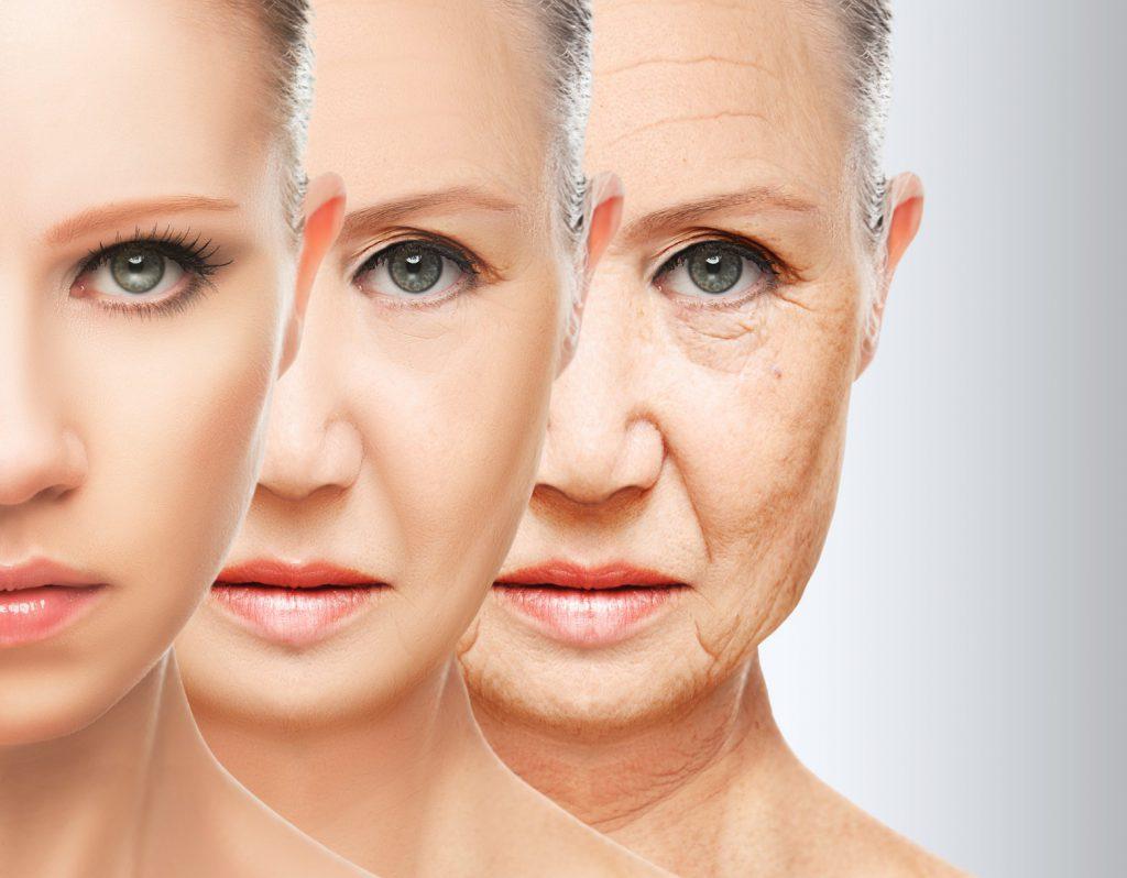 менопаузальная гормонотерапия