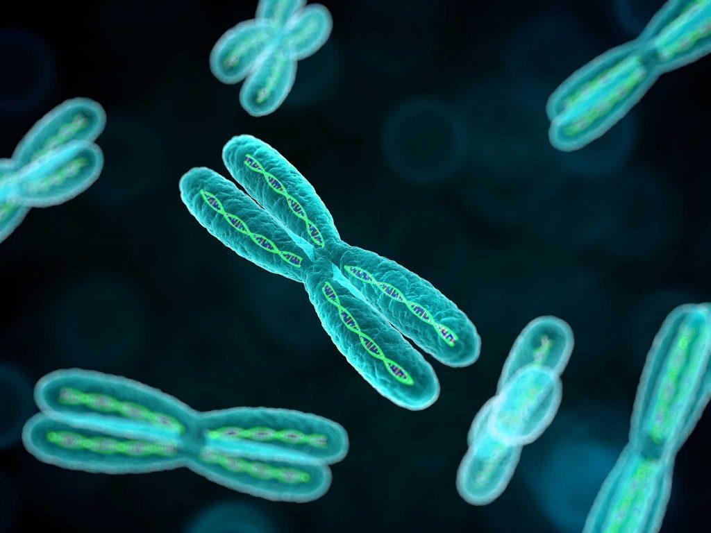 хромосомные аномалии плода