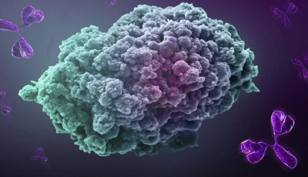 метастазирование опухолей