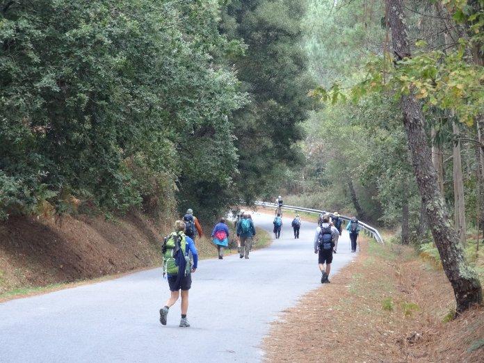 дорога с паломниками