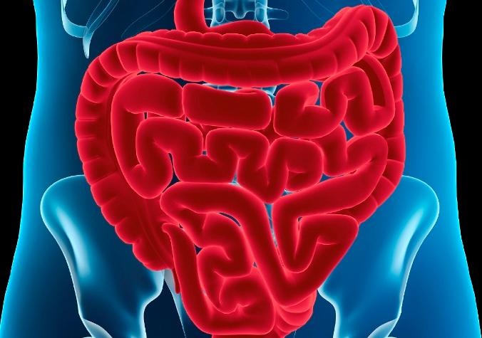 причины рака ободочной кишки