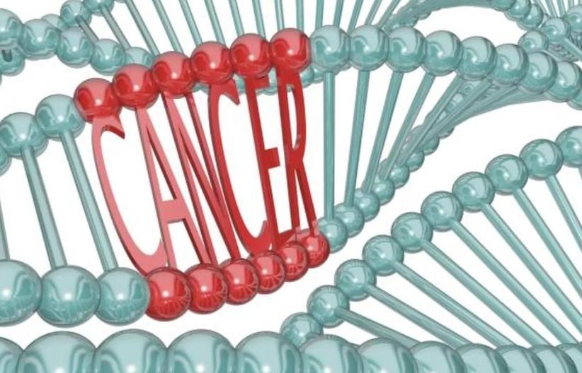 мутация гена brca