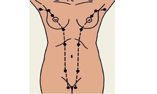 добавочные молочные железы