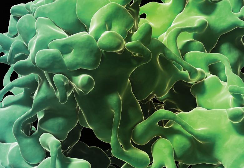 рост злокачественной опухоли