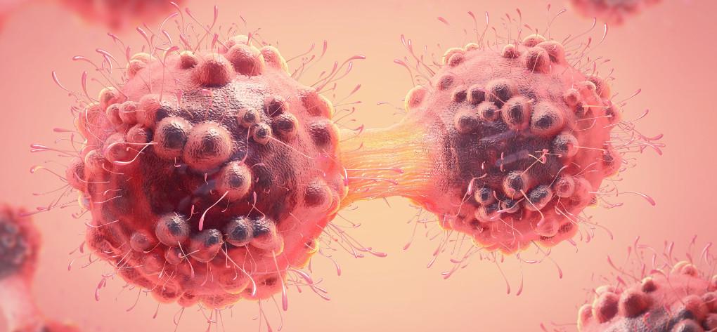история развития рака