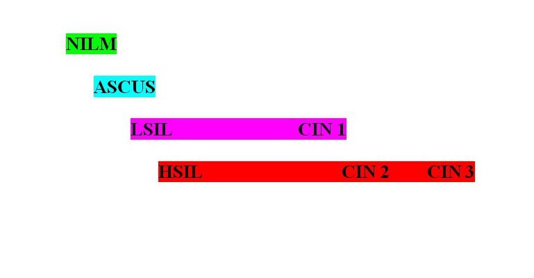 классификация предрака шейки матки