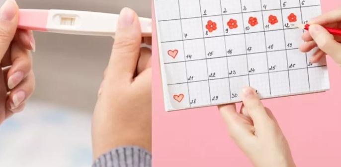 менструация в первый месяц беременности