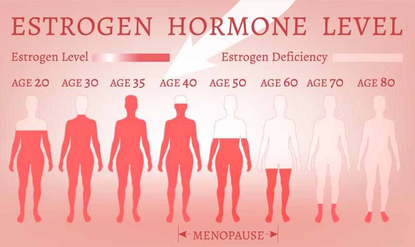 дефицит эстрогенов в менопаузе